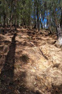 A tad steep...