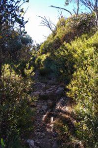Bungalow Spur