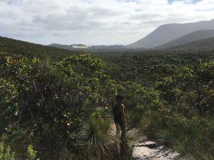 On Telegraph Tk - overlooking Oberon Bay